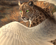 Werecat